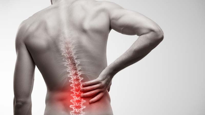 Fixing low back pain | Dr. Phil Maffetone